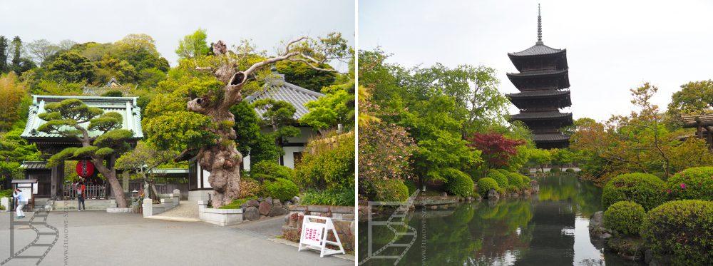 Ogród japoński - inspiracje